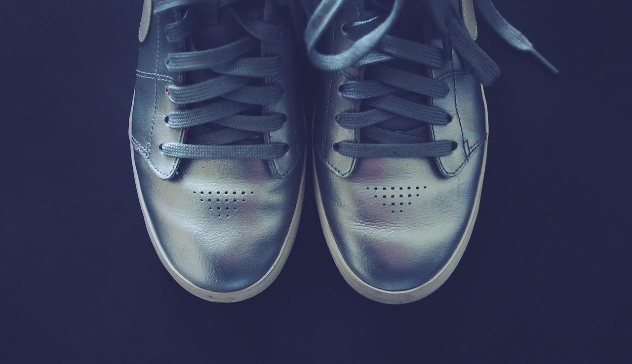 silver-698583_1280