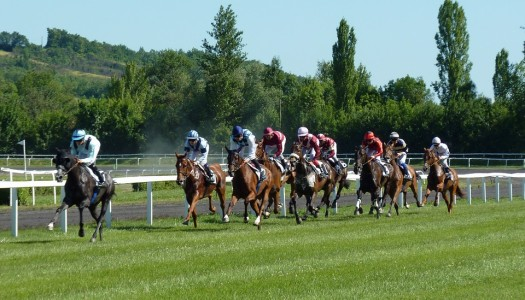 5 Strategies for Greater Success in Horse Racing Betting
