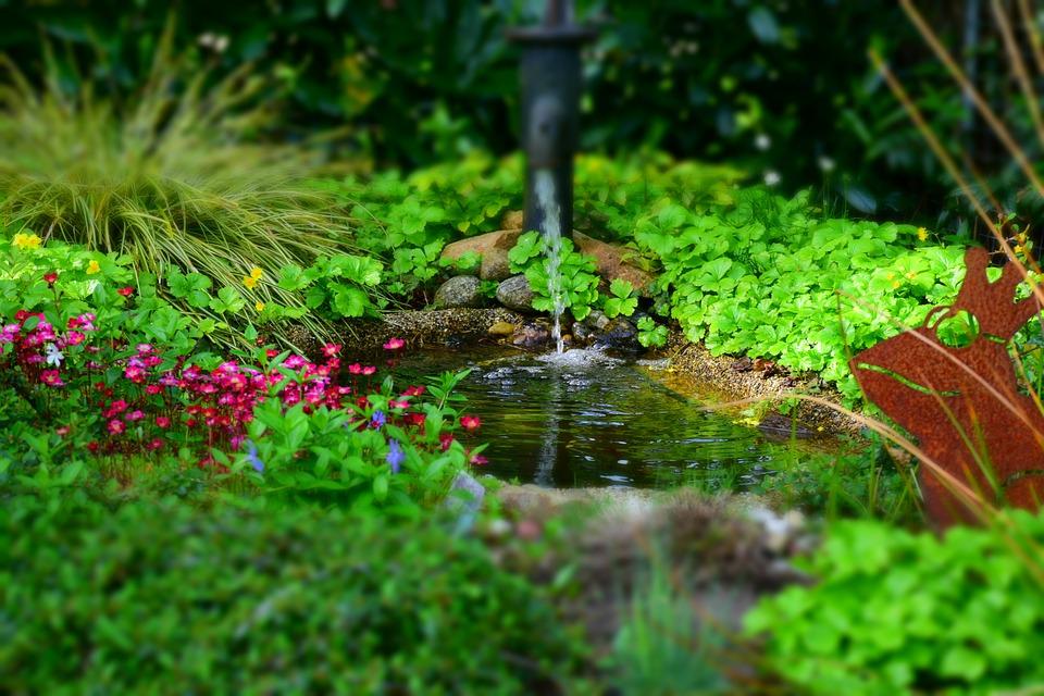 garden-768142_960_720