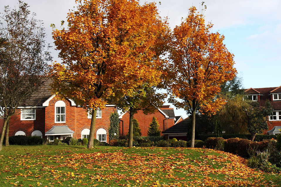 9055-a-house-surrounded-by-autumn-foliage-pv