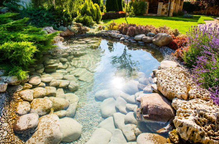 A Homeowners Guide To Building Your Own Pond